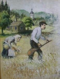 Jordbruksklasser